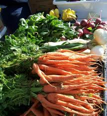 Two crops of carrots can be harvested in Oklahoma